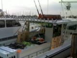 Striper Fishing Trip – Chesapeake Bay