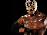 WWE Division Returning?