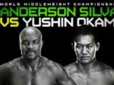 UFC 134 Predictions