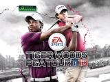 Tiger Woods PGA Tour Golf '13