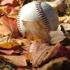 Fall Baseball: Discover The Drama