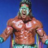 Ultimate Warrior: Matches In Remembrance