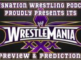 WrestleMania XXX Predictions