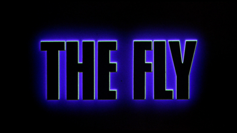 th_FlyTitle